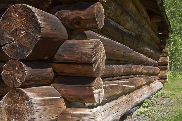 Log house building technique