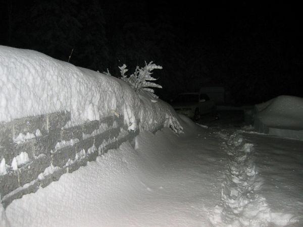 B&W snow storm