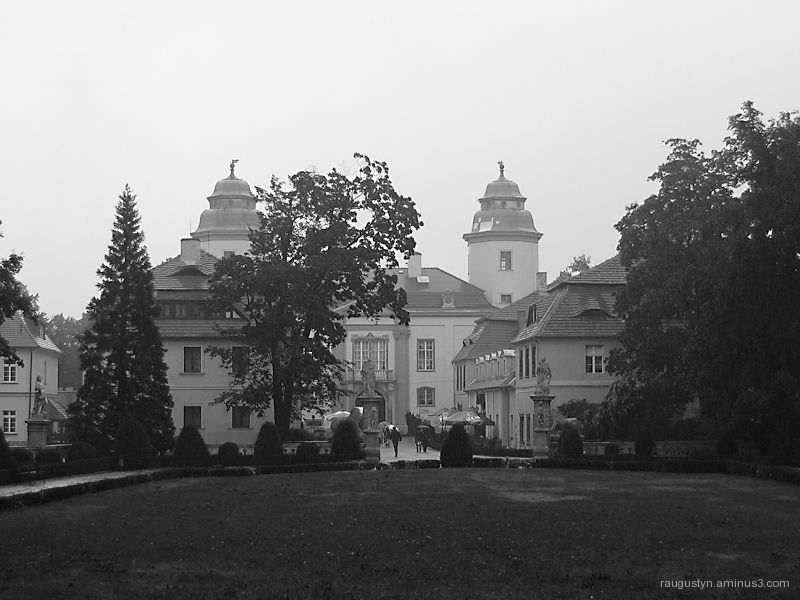 Castle in the morning fog