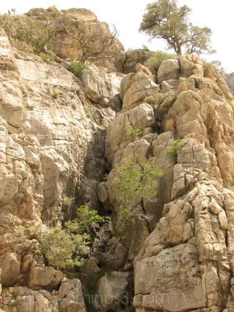 Rock Ledge
