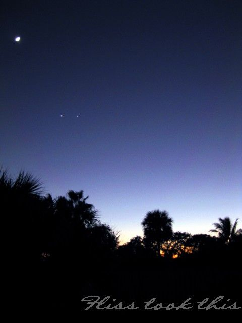 Twilight and some stars