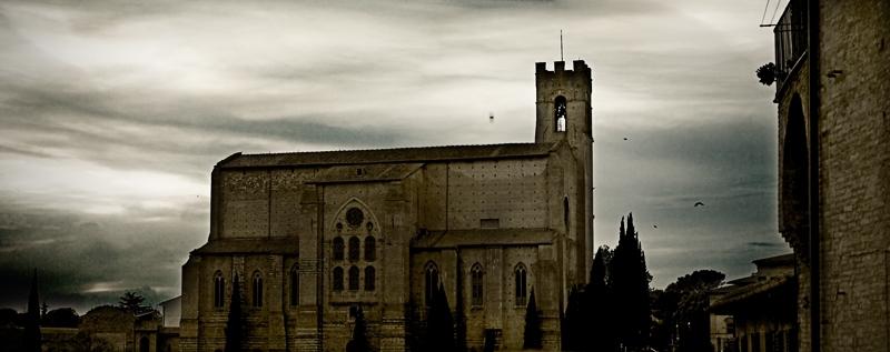 Siena ~ San Domenico