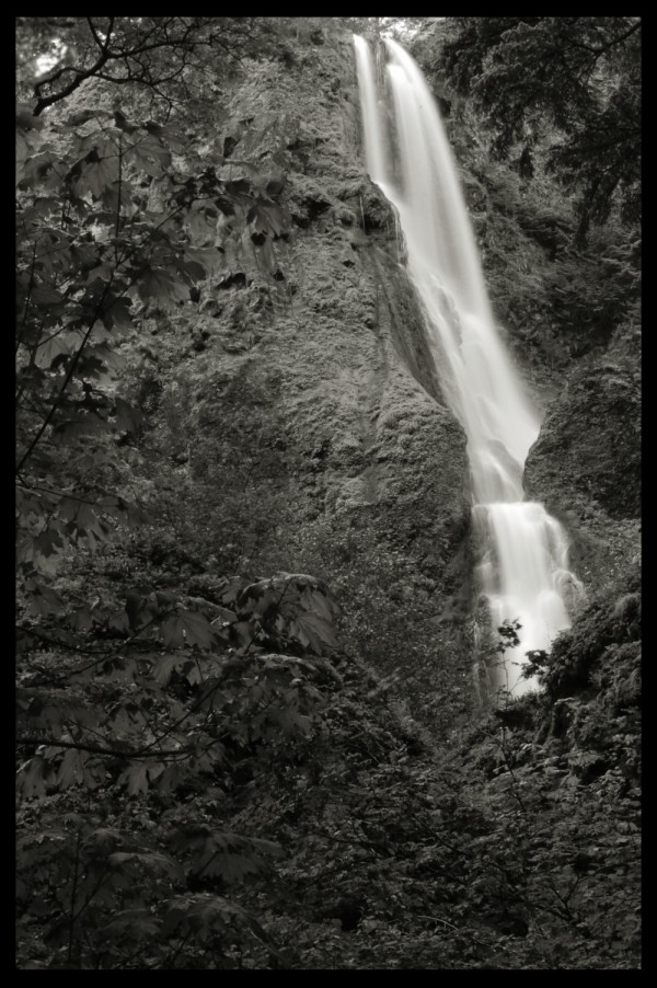 starvation creek falls in the columbia river gorge