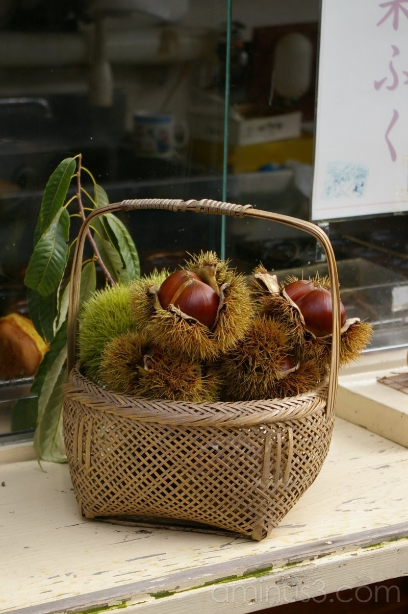 秋の味覚/Taste of Autumn
