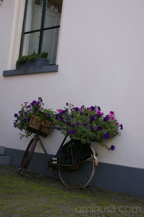 Velo with flower