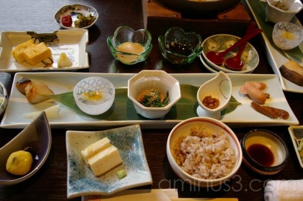 At Ryokan(japanese spa hotel)9