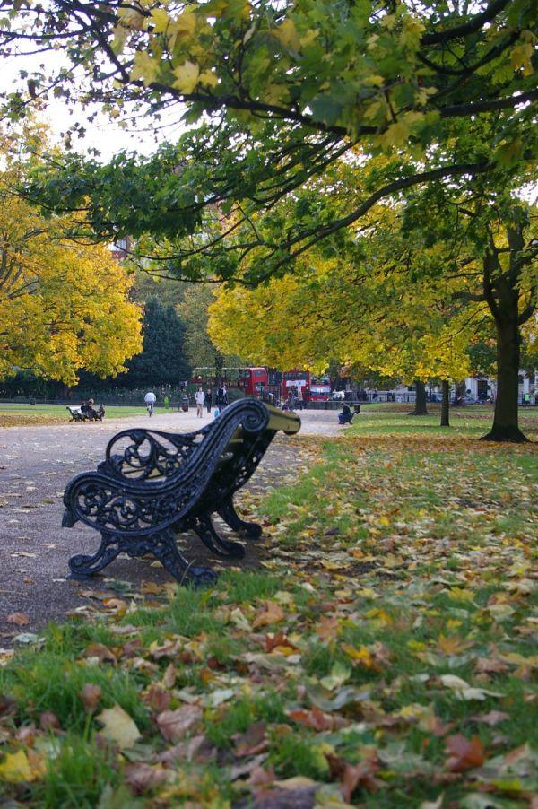Chair in Kensington Garden