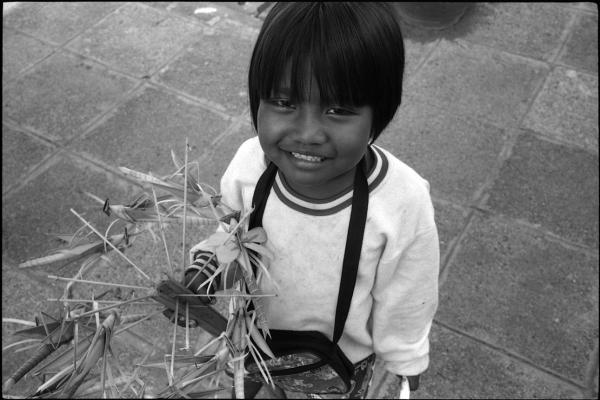 selling bamboo grashopper