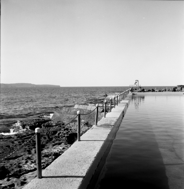 whale beach pool