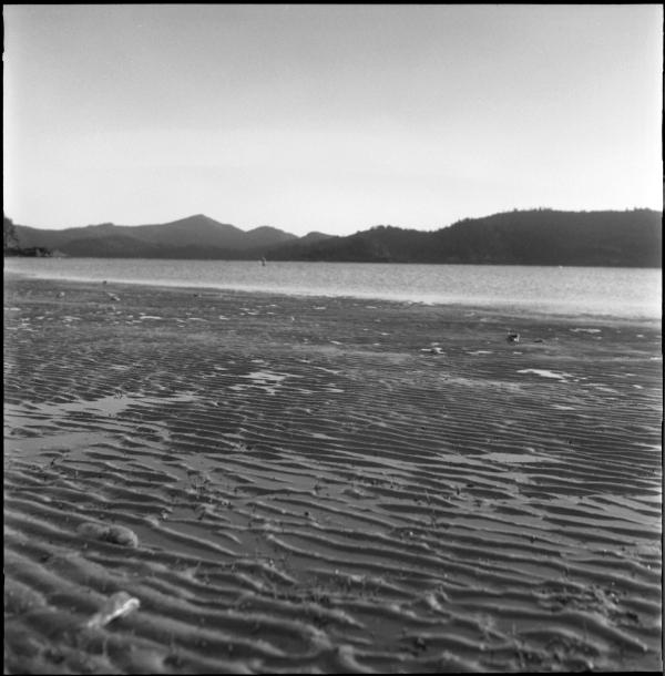 morning light on low tide