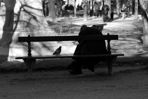L'homme, le pigeon, le banc