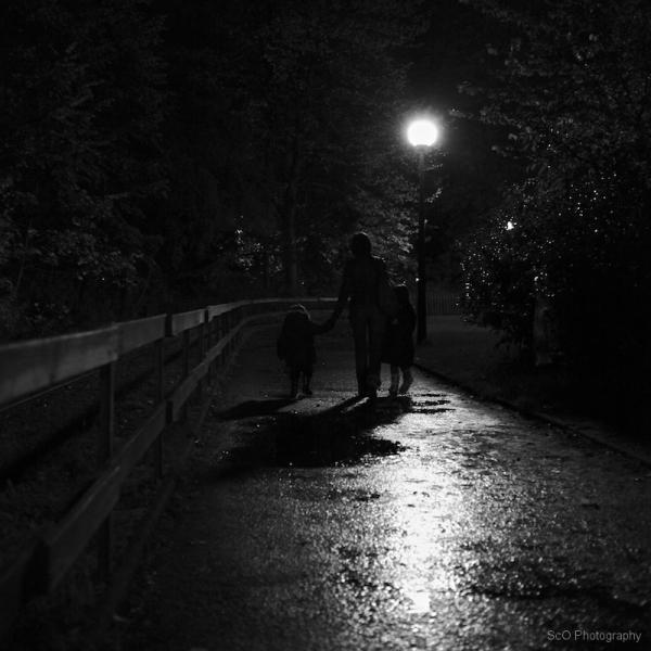 Le parc la nuit