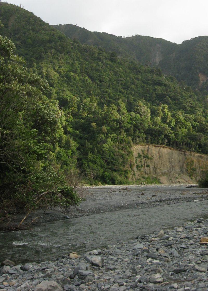 Orongorongo river