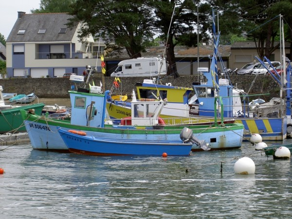 Fishing boats in harbor