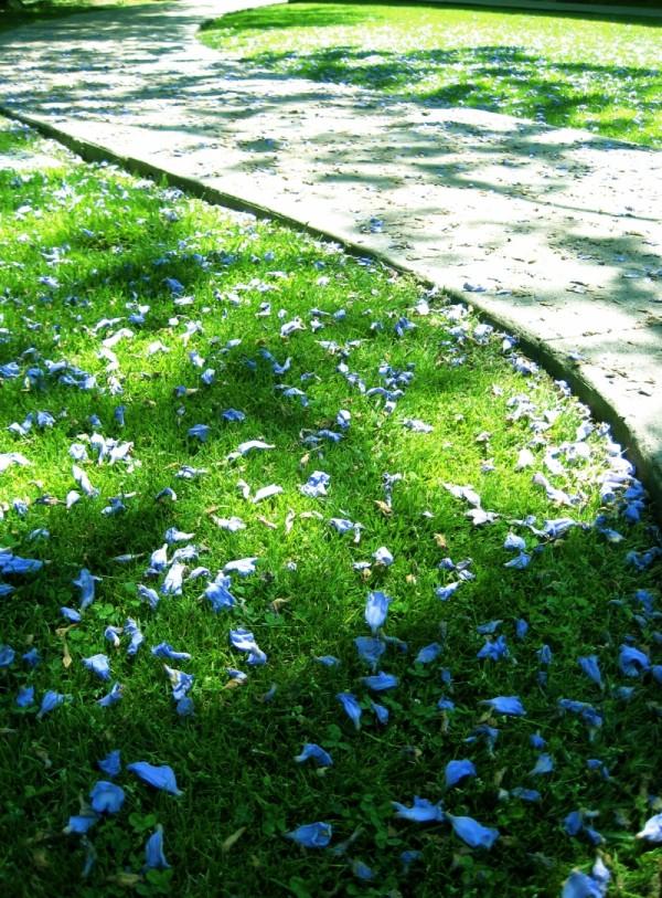 lying on a shadow