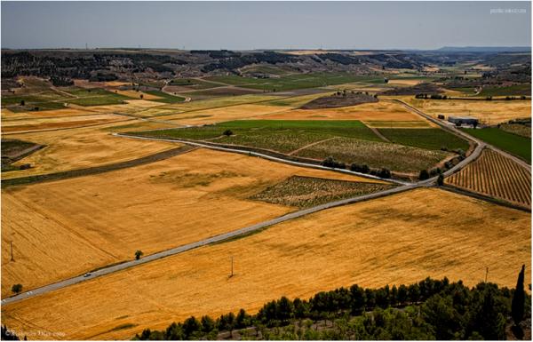 Campos de Castilla.Peñafiel