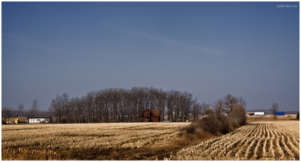 Field of Syracuse, NY
