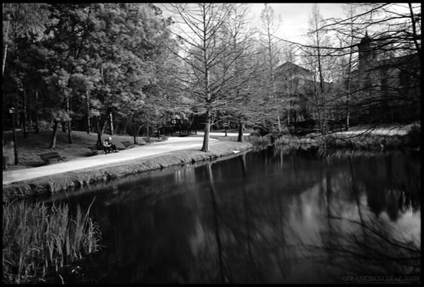Parque de Europa, III