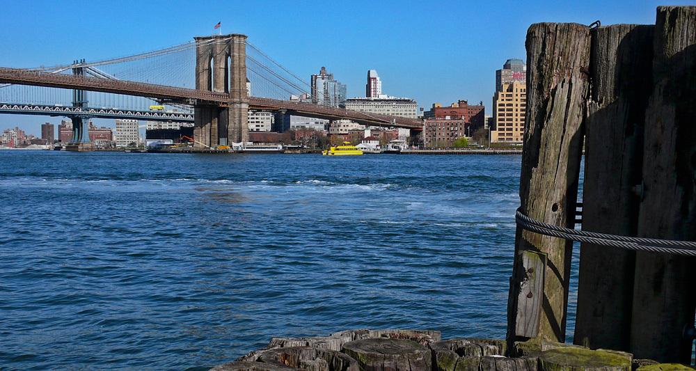 Washington & Brooklyn bridges