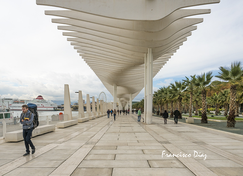Paseo Marítimo, Málaga