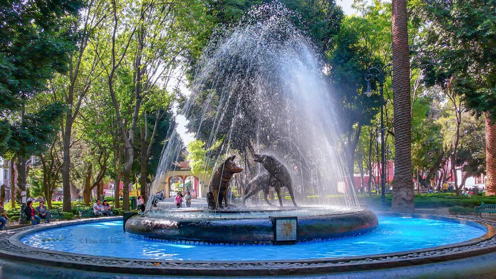 Coyoacán, México D. F.