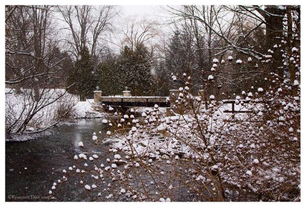 Invierno anticipado
