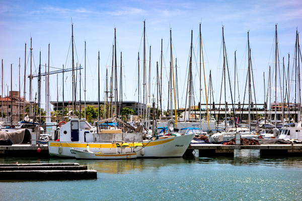 En el puerto