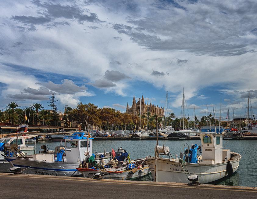 Puerto pesquero y catedral