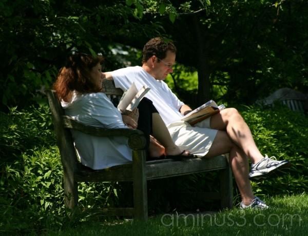 garden, couple, privacy, reading