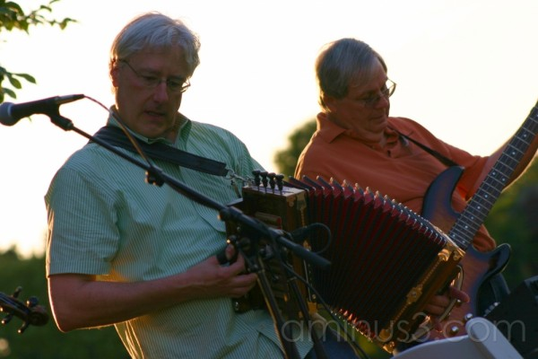 Musicians (concert in the park)