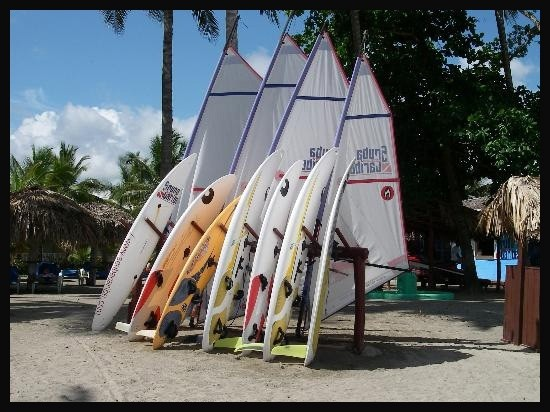 No one wants to windsurf?