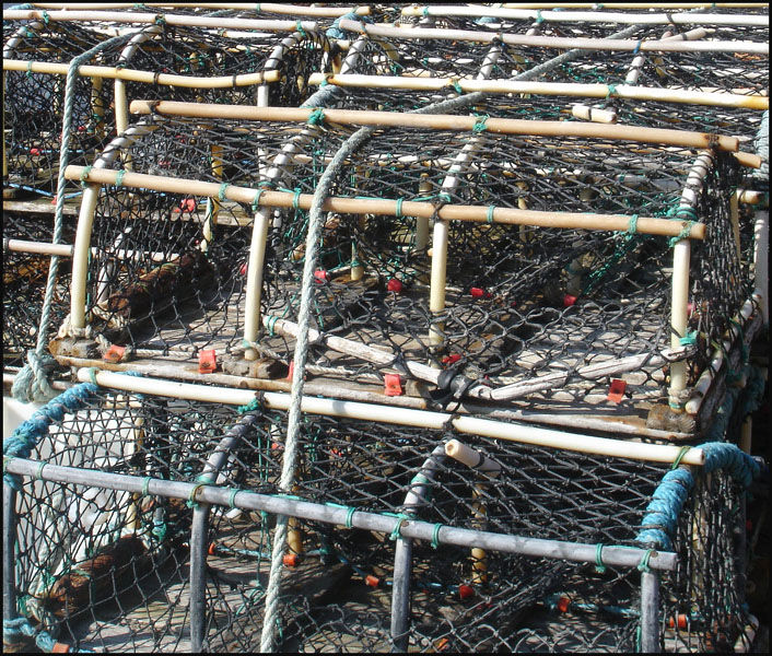 Crab Pots Again
