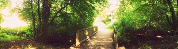 wonderful nature Panorama :)!