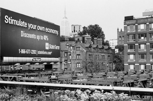 New York as Seen From High Line Park