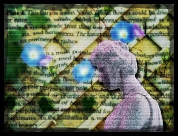 digitally created collage using photoshop