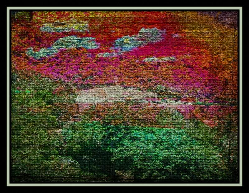 collage using st thomas photographs