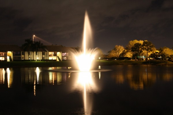 the lake at night