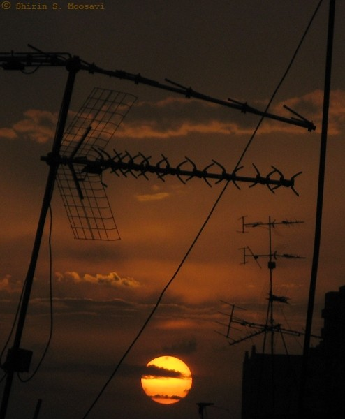 silhouette, sunset, wire, antenna, shirin moosavi
