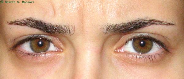 self-portrait, eyes, shirin moosavi