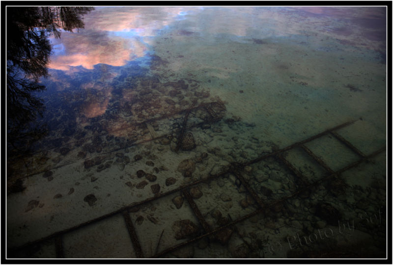 transparences et reflets