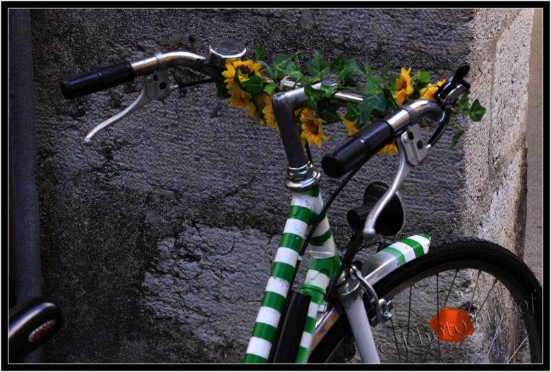 A vélo dans Bienne 3/3