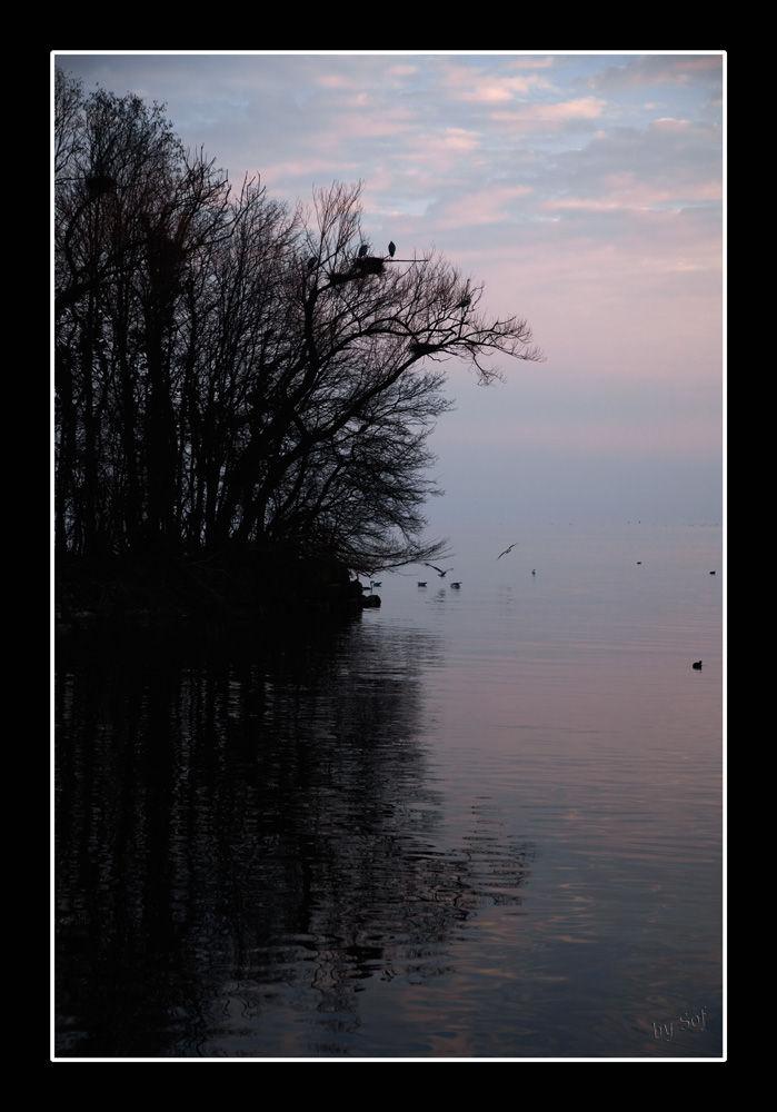 lac de Neuchatel, soir sur le lac