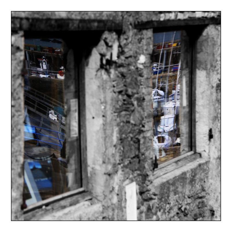 Des images plein les vitres