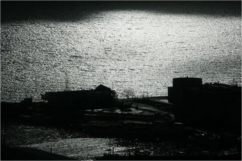 Lumière hivernale sur le lac