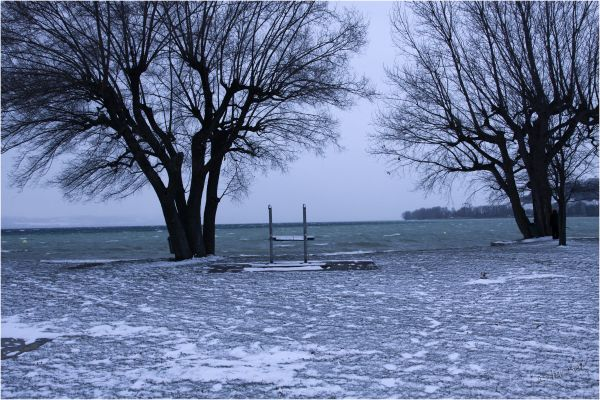 Ambiance glaciale (5)