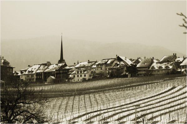 Cortaillod village sous la neige