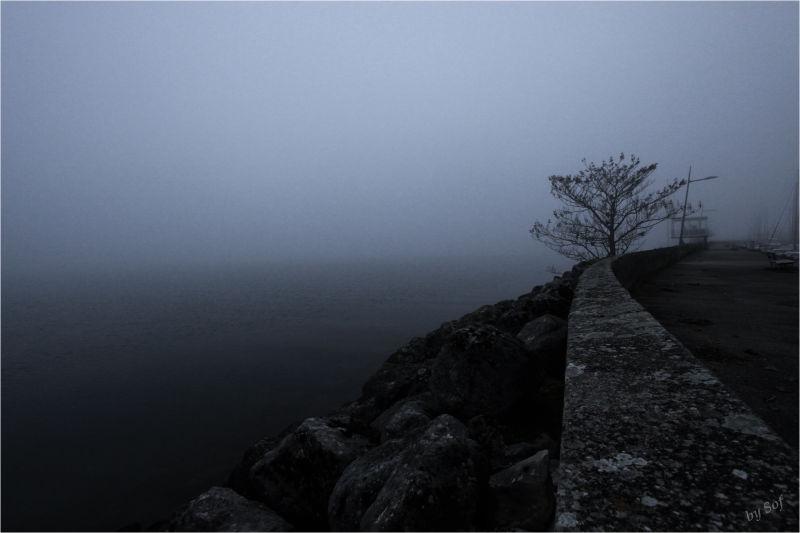Ambiance hivernale(5)