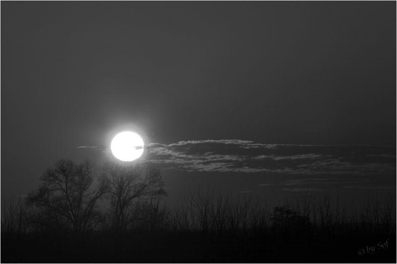 Soleil de Charente