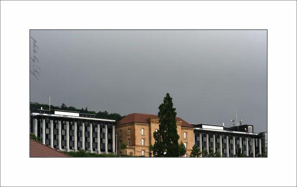l'Université de Neuchâtel