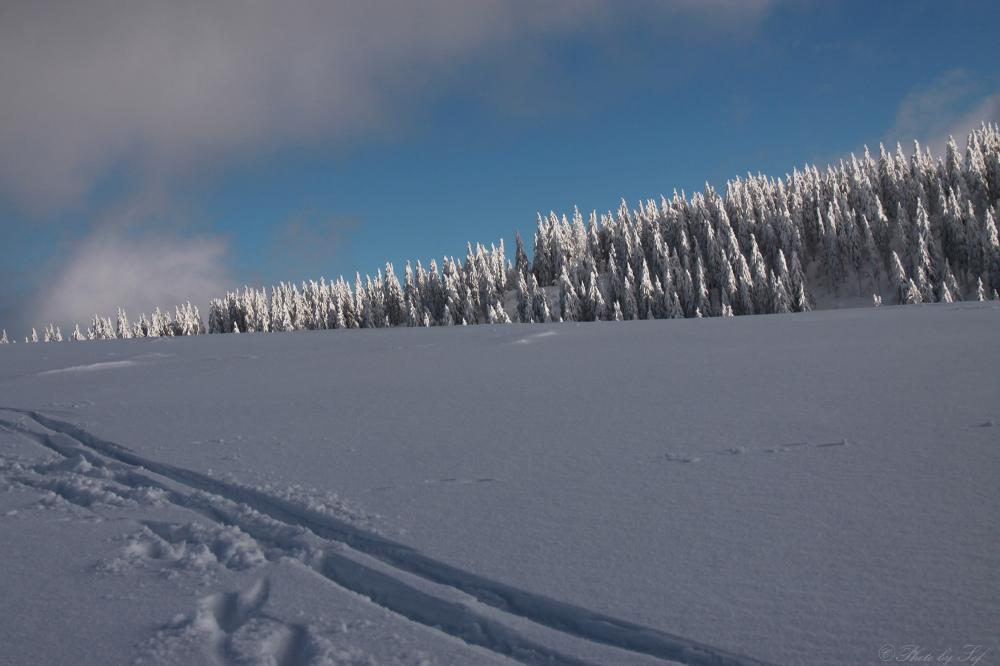 Jura neige